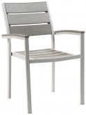 Silver Metal Armchair with Grey Finish Plastic Teak
